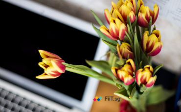 11 May FiIT Article Featured Image